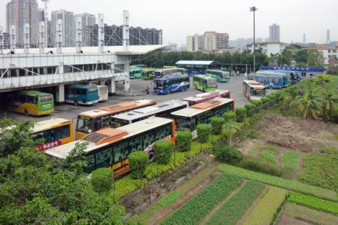 Guangzhou urban farming