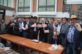 Carne bolivia