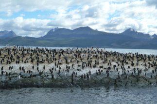 IPCC oceans report