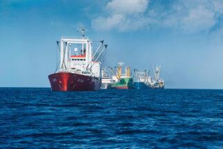WTO fishing subsidies