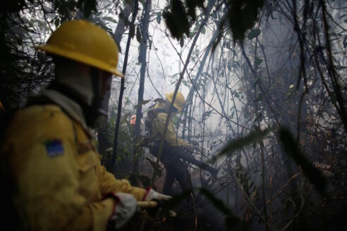 Amazon fires Apui Amazonas August 2020