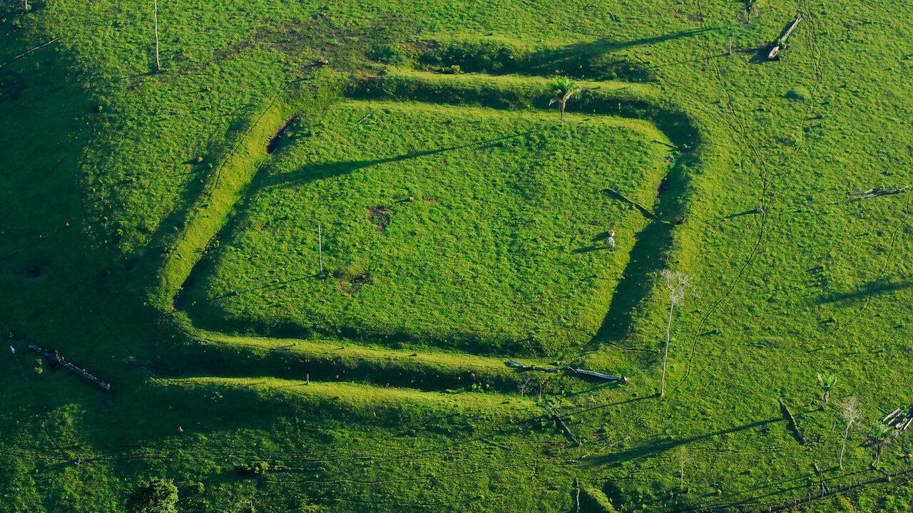 Amazon geoglyph farming
