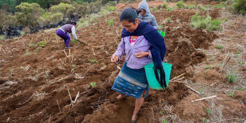 Latin America decarbonisation jobs