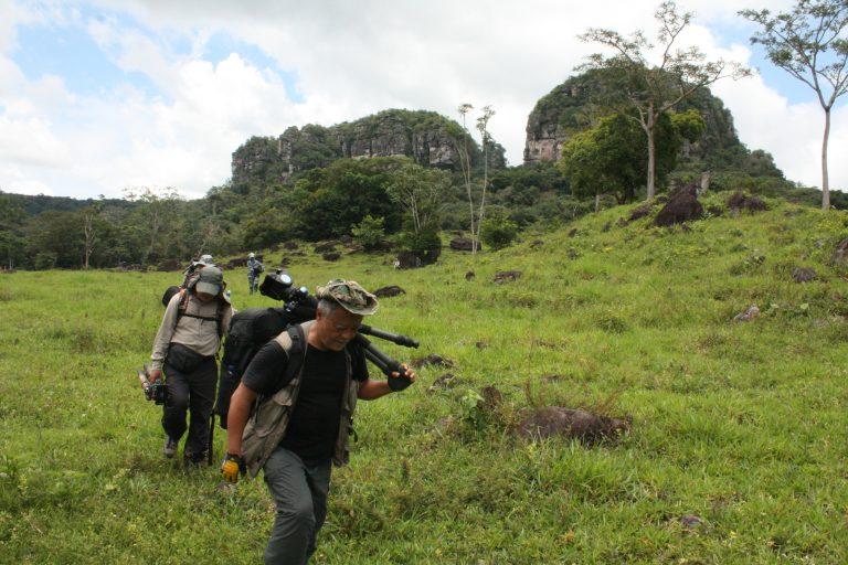 chinese ecotourists