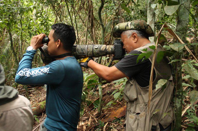 chinese ecotourist